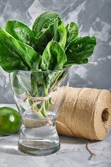 水と花瓶に新鮮なほうれん草の葉環境に優しいパッケージでバックレイアウト