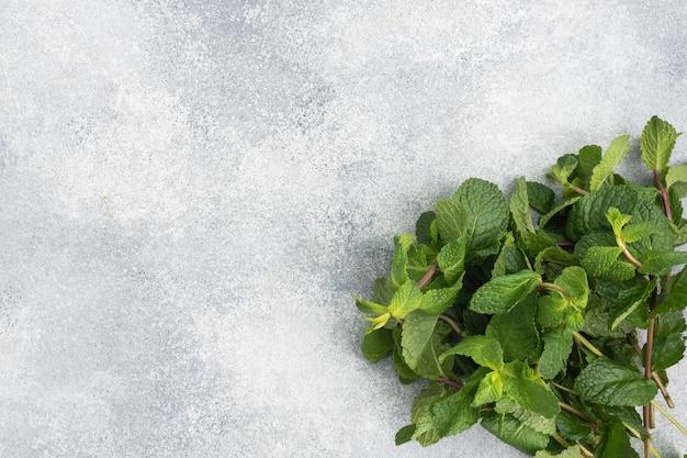 コピースペースのあるグレーの香りのよいミントの新鮮な小枝。