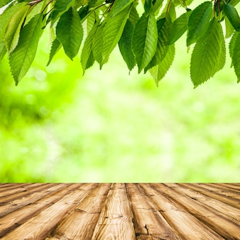 青いボケ味と日光と木の床と新鮮な春の緑の野草。