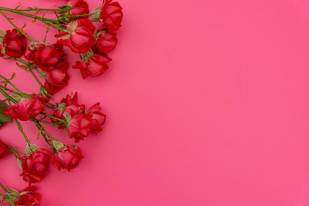 ピンクの表面に新鮮な春の植物