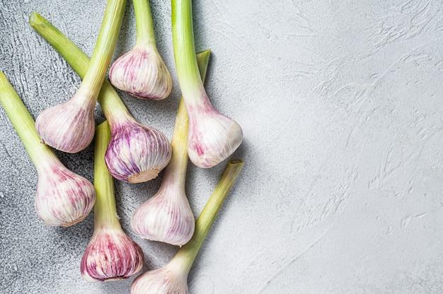 Свежие весенние молодые луковицы чеснока на кухонном столе. белый фон. вид сверху. скопируйте пространство.