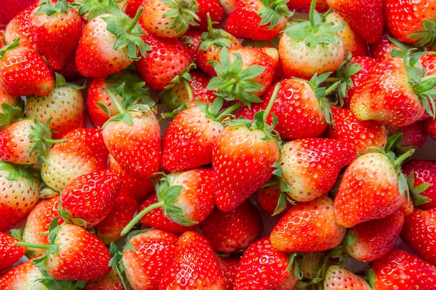Fresh strawberries are fresh from the farm for sale in the market
