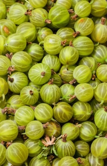 Fresh and sweet gooseberry, close up.