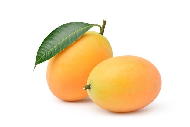 고립 된 잎 신선한 달콤한 마리 안 매 과일