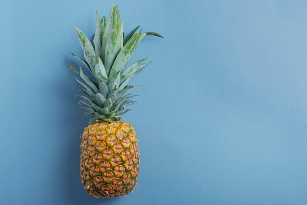 Fresh sweet pineapple on the blue wall