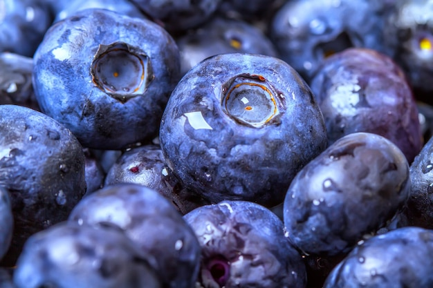 Fresh and tasty blueberries closeup with little drops of water.