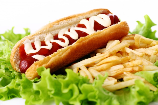 Hot dog fresco e saporito con le patate fritte