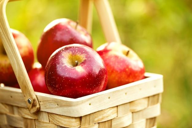 Fresh tasty red apples in wooden basket on green grass