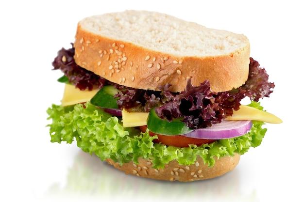 Fresh tasty sandwich on white background