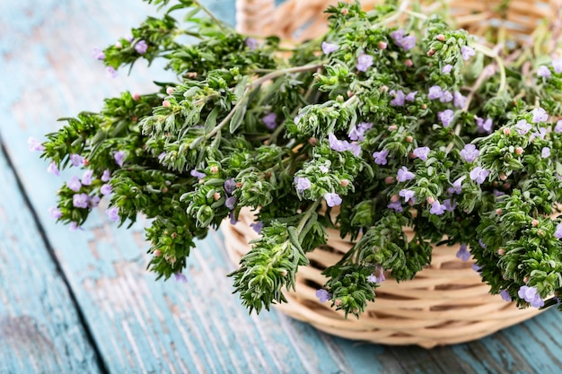 Fresh thyme in a basket over blue rustic wooden background with copyspace.
