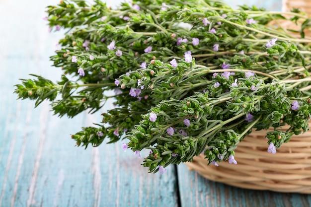 Fresh thyme in a basket