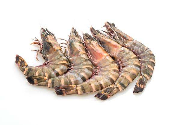 Свежие тигровые креветки или креветки, изолированные на белом