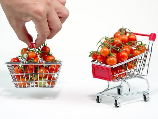 Fresh tomato on the clear white
