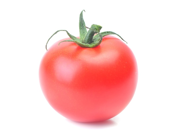 신선한 토마토