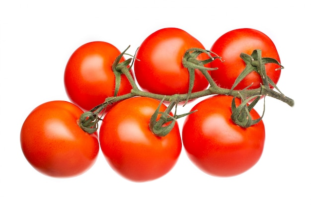 Fresh tomatoes on a green branch isolated on white . solanum lycopersicum