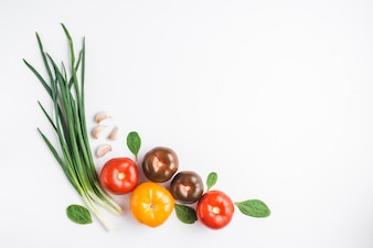 Fresh tomatoes near herbs