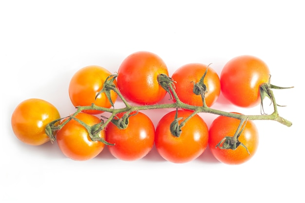 白い表面にフレッシュトマト。