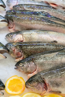 Fresh trout fish on an ice counter in a supermarket.