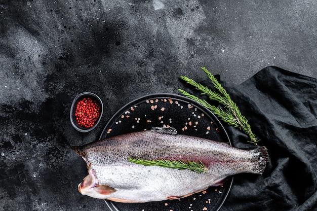 소금과 로즈마리와 신선한 송어 물고기입니다. 검은 표면. 평면도. 공간 복사