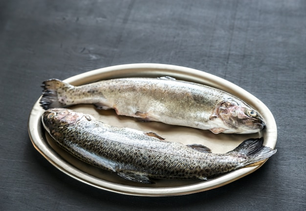 Fresh trouts in ice on the vintage metal tray