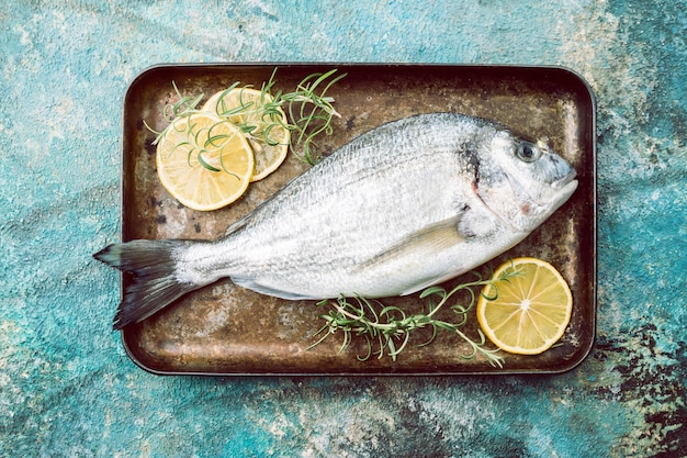 파란색 배경 위에 레몬 슬라이스와 허브와 함께 쟁반에 신선한 생 쌀된 황새 또는 도미 생선, 상위 뷰