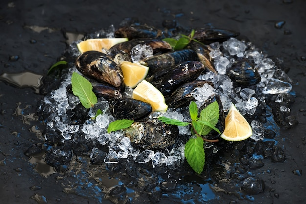 Fresh uncooked mussels with lemon, herbs and spices on chipped ice over dark slate stone backdrop
