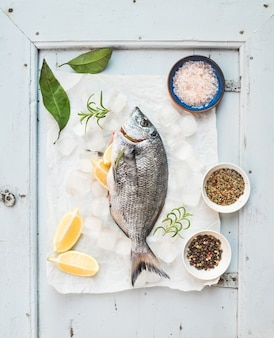 Fresh uncooked sea bream fish with lemon, herbs, ice and spices on rustic blue wooden board
