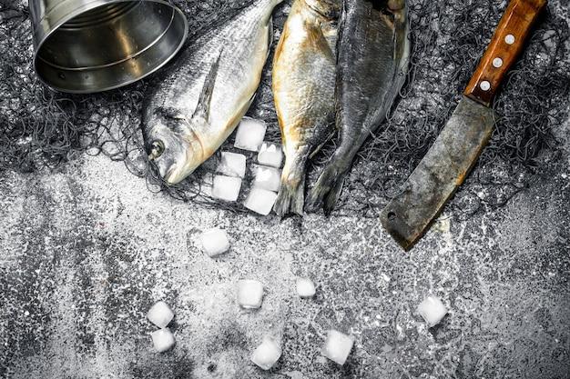 Fresh unprepared dorado fish on cutting board on rustic table.