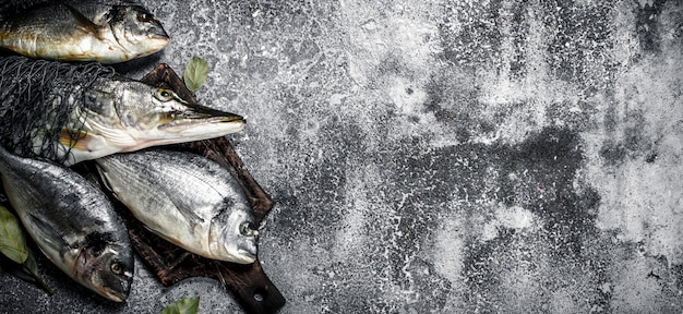 Fresh unprepared fish on rustic table.