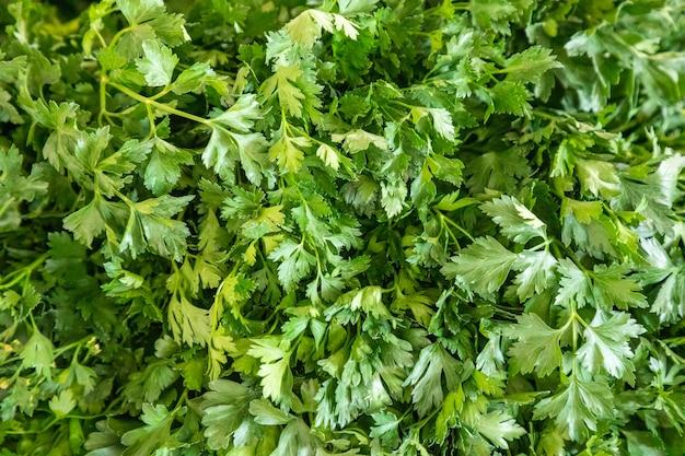 Свежие овощи для продажи на турецком рынке в анталии в турции