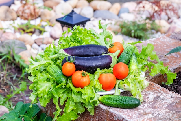 Fresh vegetables are lying on lettuce leaves on the street.