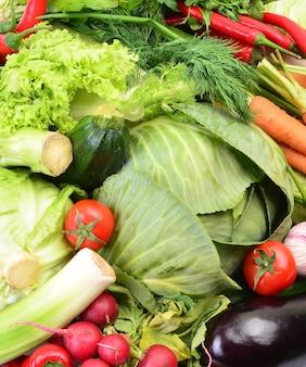 毎日の新鮮な野菜