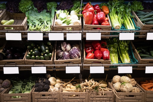 Fresh vegetables with price tags on shelf in grocery store supermarket
