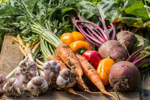 Fresh vegetables on wood vegetables harvest