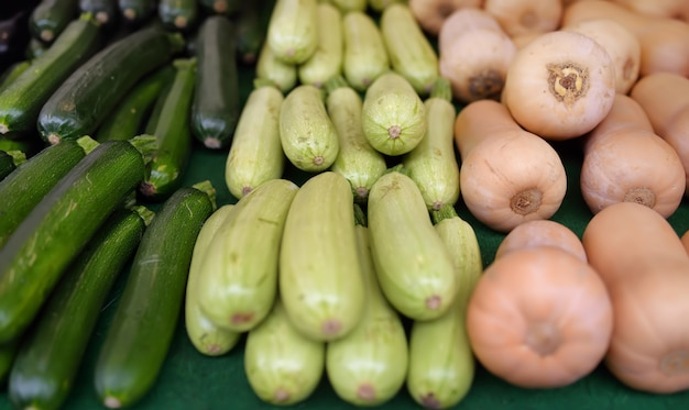 Fresh vegetables - zucchini, squash and pumpkin on farmer agricultural market