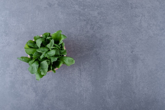 Fresh watercress in cup, on the marble surface.