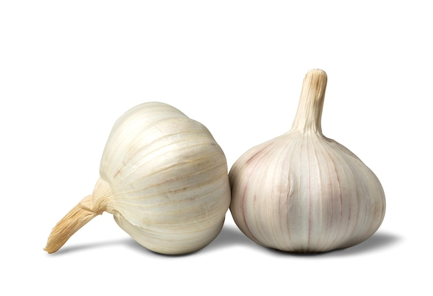 Fresh white garlic with clipping path isolated on a white space. food and healthy concept.