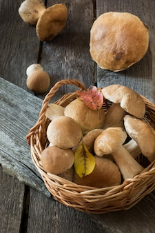 Fresh white mushrooms-boletus edulis in basket for cooking. fall.