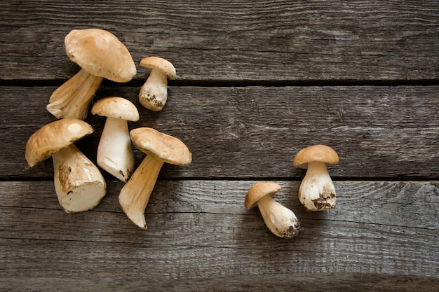 Fresh white mushrooms from forest on rustic wooden board. top view.