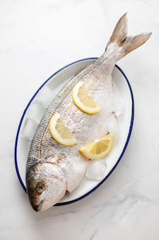Fresh white seabream with ice and lemon on dish