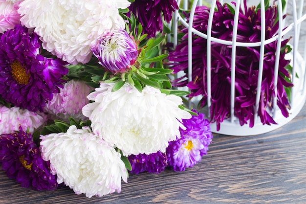 Fresh white and violet aster flowers on table