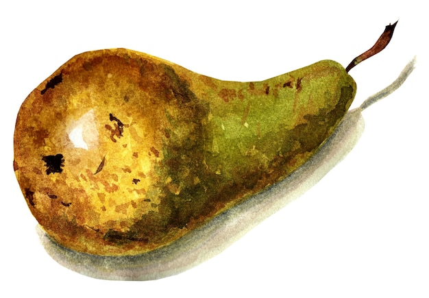 A fresh whole green pear with brown specks lying on its side watercolor illustration isolated