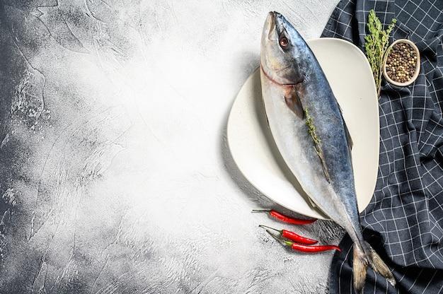 Свежий цельный японский амберджек. желтохвост сырой рыбы. серый фон. вид сверху.