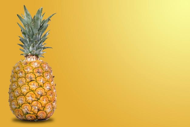 Fresh whole pineapple with orange background and side space for text