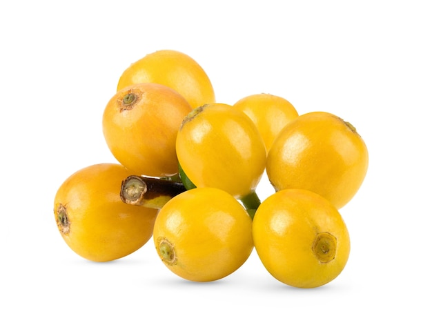 白い背景で隔離の新鮮な黄色のコーヒー豆