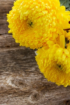 Fresh yellow mum flowers on wooden table
