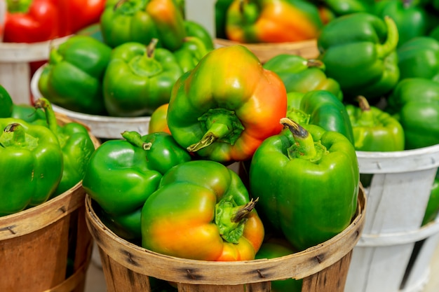 Fresh yellow, orange, green and red organic bell peppers capsicum on display for sale at local farmer's market