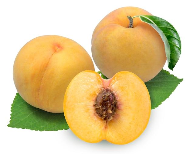 흰색 배경에 신선한 노란 복숭아 과일, (클리핑 패스와 함께) 흰색 배경에 고립 된 잎과 한국 복숭아