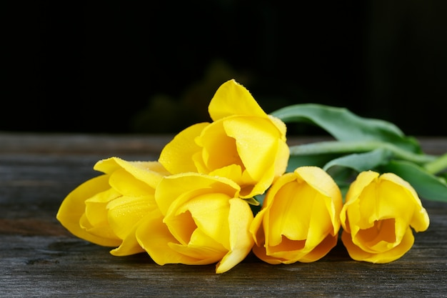Fresh yellow tulips on dark wooden surface