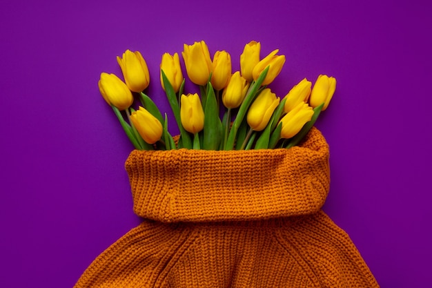 Свежие желтые тюльпаны в женском свитере на фиолетовом